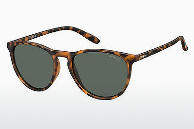 Lunettes de soleil Polaroid PLD 6003/N SOG/RC - Orange, Brunes, Havanna