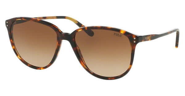 Polo PH4097 513413 GRADIENT BROWNANTIQUE TORTOISE