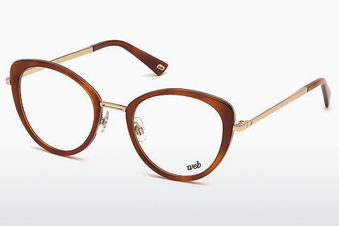 Lunettes design Web Eyewear WE5257 053