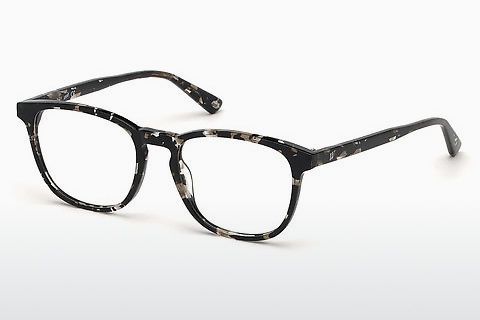 Lunettes design Web Eyewear WE5293 055