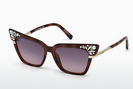 Lunettes de soleil Dsquared DQ0293 53B - Havanna, Yellow, Blond, Brown